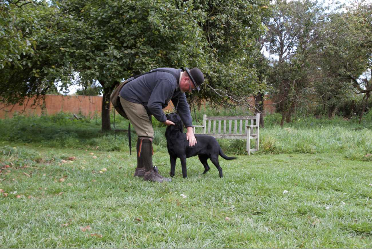 roger the gundog trainer
